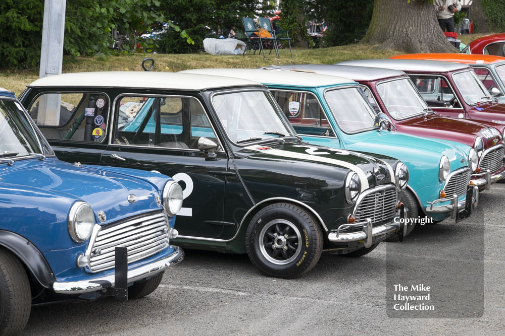 A line-up of Mini Coopers, Chateau Impney Hill Climb 2015.