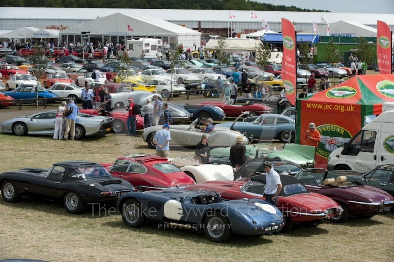 The Jaguar Enthusiasts Club enclosure, Silverstone Classic, 2010