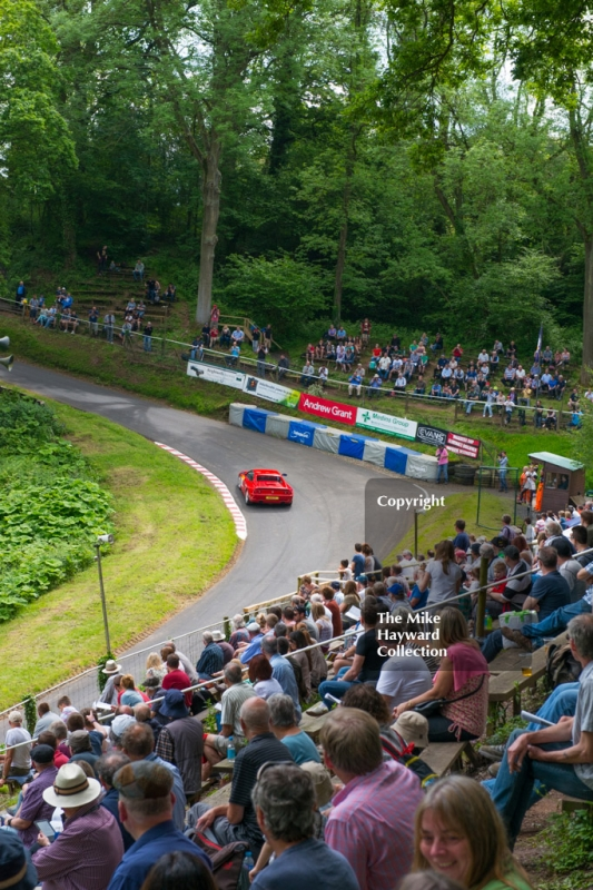 A grandstand view at the esses, Shelsley Walsh Hill Climb, June 1st 2014.