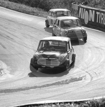 John Handley, British Leyland Mini Cooper S, followed by Roger Enever, JCB Mini Cooper S, and Brian Chatfield, Mini Cooper S, Shaw's Hairpin, British Saloon Car Championship race, BRSCC Guards 4,000 Guineas International meeting, Mallory Park, 1969.