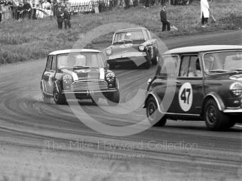 John Rhodes, Cooper Car Company Mini Cooper S, chasing Steve Neal, Mini Cooper S, through Cascades followed by Chris Craft, Superspeed Ford Anglia, Oulton Park Gold Cup meeting, 1967.